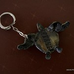 Turtle Keychain from Batanes (given to me by Al)
