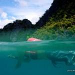 Snorkeling at Skeleton Wreck