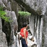 Sharp Limestone Cliffs at Barracuda Lake