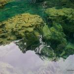 Rocks and Fishes in Kayangan Lake