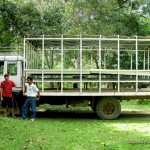 Calauit Safari Park Tour Truck
