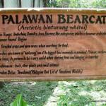 Palawan Bearcat Signage - Calauit Safari Park