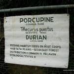 Porcupine Signage - Calauit Safari Park