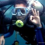 Wayne Diving