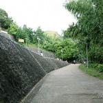 Mt. Tapyas Street