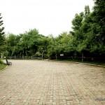 Davao People's Park - Walkway