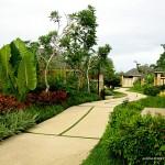 Amorita Resort - Walkway