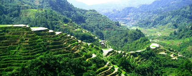 this is A Peek of Banaue Rice Terraces in Ifugao