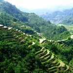Banaue Rice Terraces in Infugao