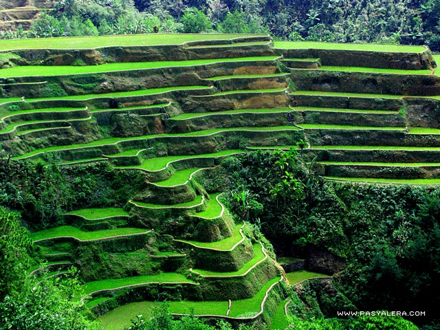 A peek of banaue rice terraces in ifugao for What are terraces