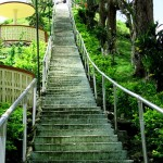Stairs going to the Chocolate Hills View Deck