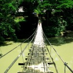 Bohol - Hanging Bridge