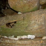 Coffin at Lumiang Cave in Sagada