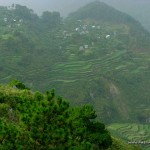 Rice terraces at Kiltepan Viewpoint